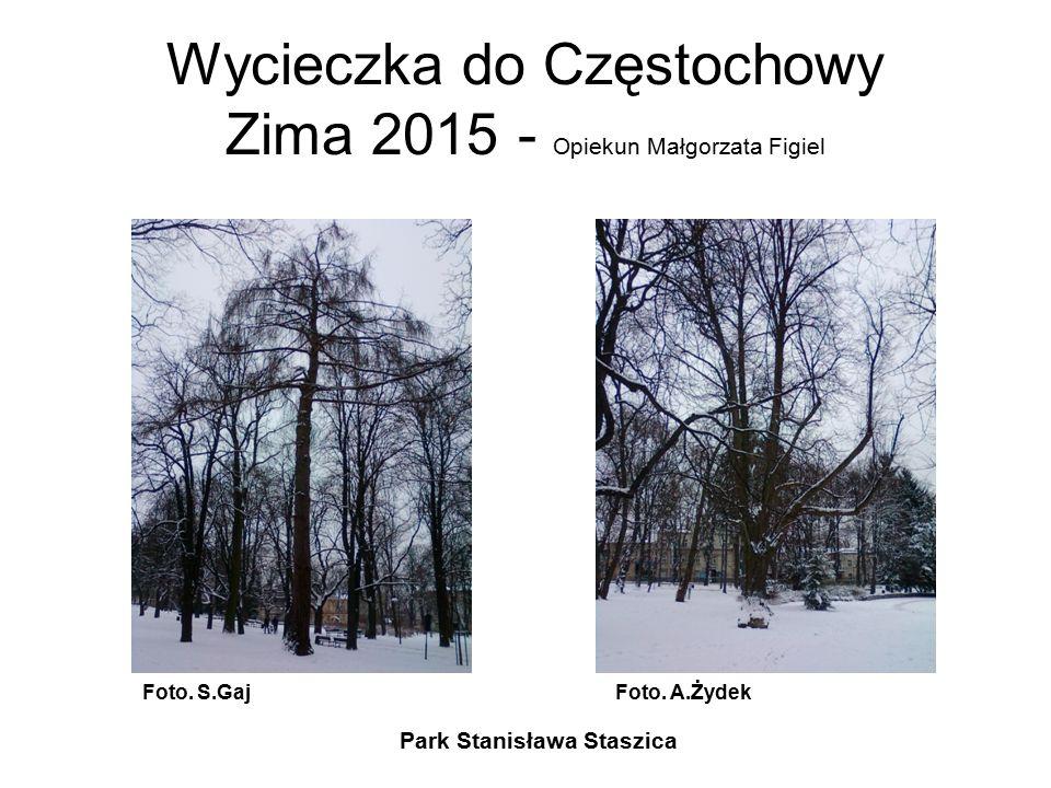 Wycieczka do Częstochowy Zima 2015 - Opiekun Małgorzata Figiel Park Stanisława Staszica Foto. S.GajFoto. A.Żydek