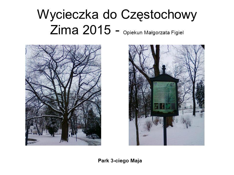 Wycieczka do Częstochowy Zima 2015 - Opiekun Małgorzata Figiel Park 3-ciego Maja