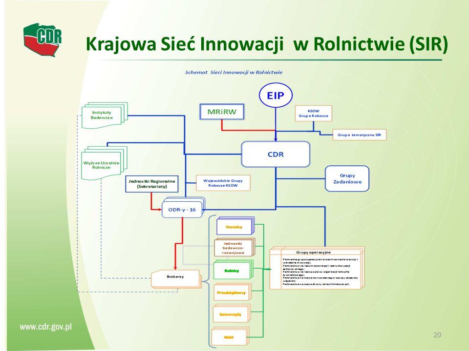 Krajowa Sieć Innowacji w Rolnictwie (SIR) 20