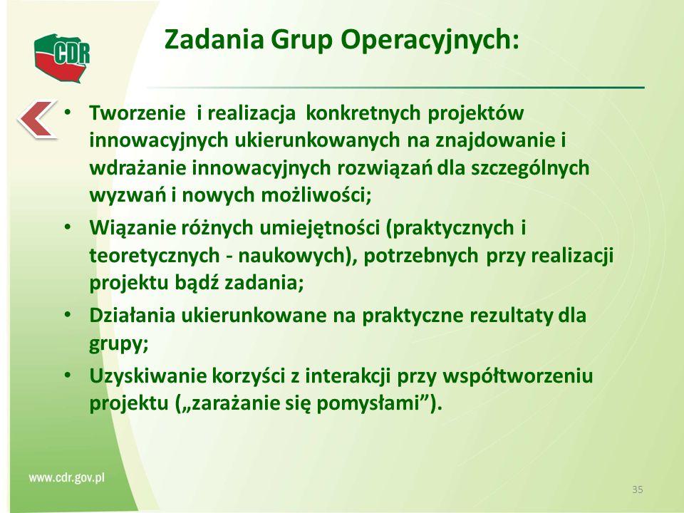 """Zadania Grup Operacyjnych: Tworzenie i realizacja konkretnych projektów innowacyjnych ukierunkowanych na znajdowanie i wdrażanie innowacyjnych rozwiązań dla szczególnych wyzwań i nowych możliwości; Wiązanie różnych umiejętności (praktycznych i teoretycznych - naukowych), potrzebnych przy realizacji projektu bądź zadania; Działania ukierunkowane na praktyczne rezultaty dla grupy; Uzyskiwanie korzyści z interakcji przy współtworzeniu projektu (""""zarażanie się pomysłami )."""