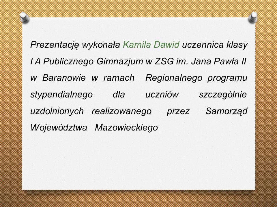 Prezentację wykonała Kamila Dawid uczennica klasy I A Publicznego Gimnazjum w ZSG im.
