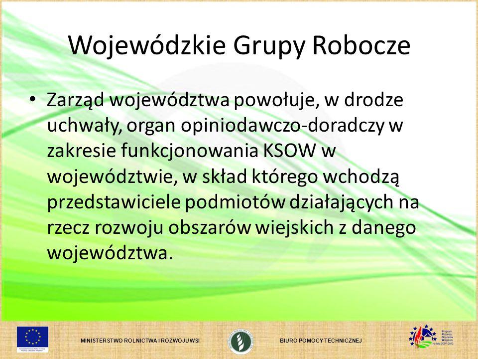MINISTERSTWO ROLNICTWA I ROZWOJU WSIBIURO POMOCY TECHNICZNEJ Wojewódzkie Grupy Robocze Zarząd województwa powołuje, w drodze uchwały, organ opiniodawc