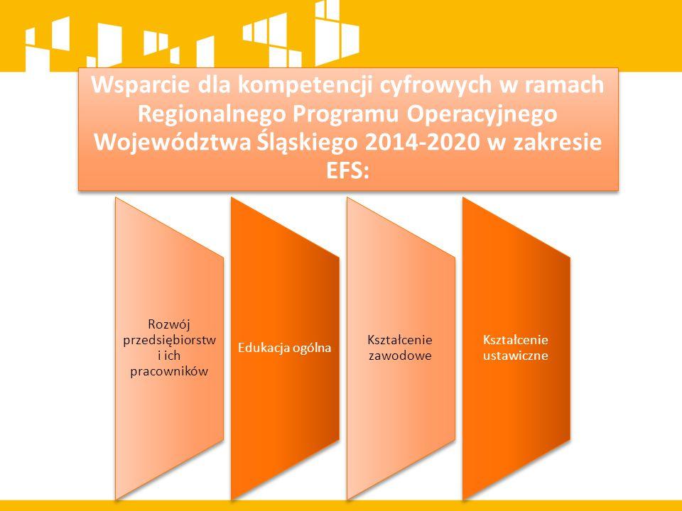 Wsparcie dla kompetencji cyfrowych w ramach Regionalnego Programu Operacyjnego Województwa Śląskiego 2014-2020 w zakresie EFS: Rozwój przedsiębiorstw