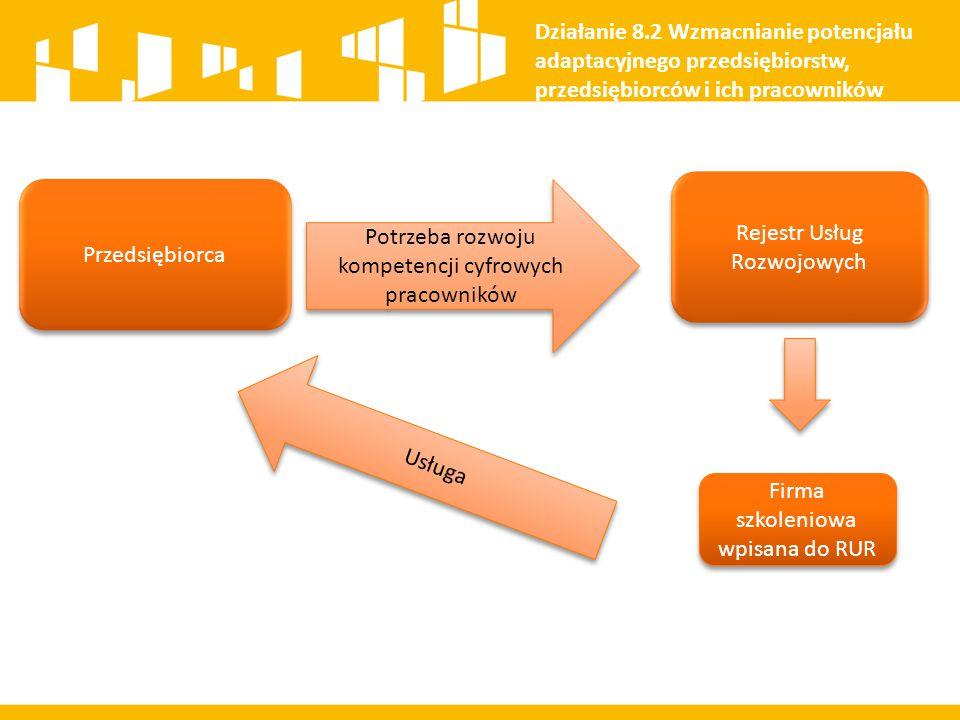 Przedsiębiorca Potrzeba rozwoju kompetencji cyfrowych pracowników Rejestr Usług Rozwojowych Działanie 8.2 Wzmacnianie potencjału adaptacyjnego przedsi