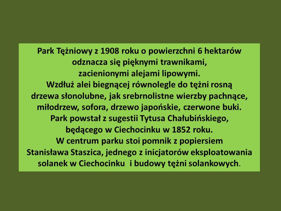Park Tężniowy z 1908 roku o powierzchni 6 hektarów odznacza się pięknymi trawnikami, zacienionymi alejami lipowymi.