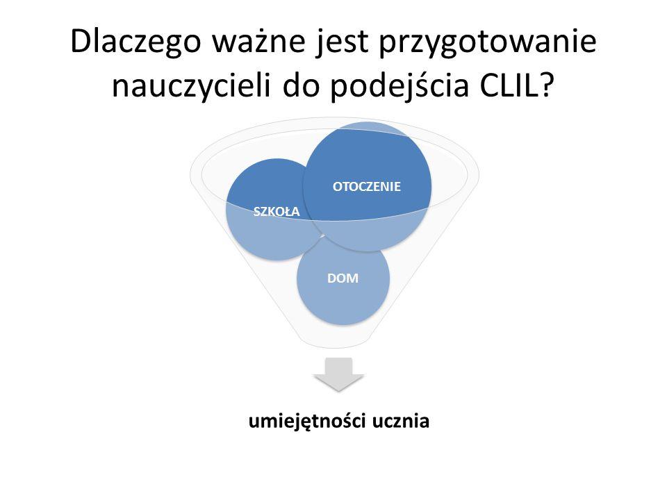 Czynniki pozaszkolne Społeczno-demograficzne: np.status społeczno- ekonomiczny Kulturowe: np.