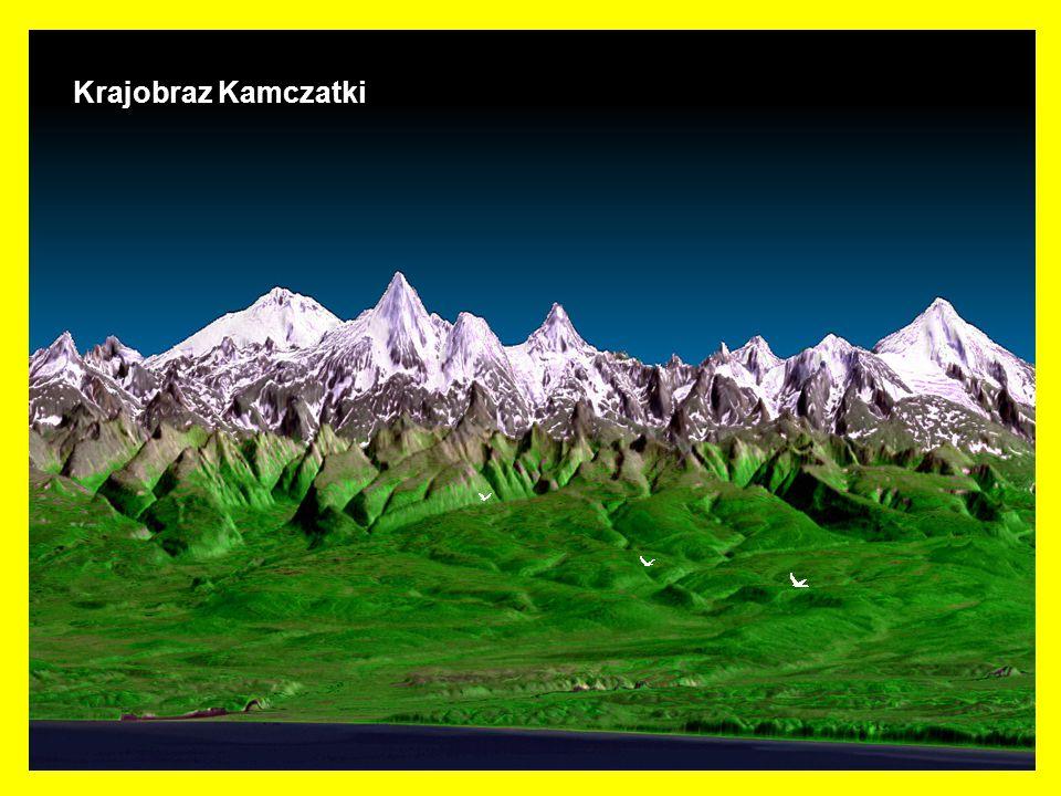 Kamczatka – półwysep w azjatyckiej części Rosji. Rozdziela Morze Ochockie i Morze Beringa.