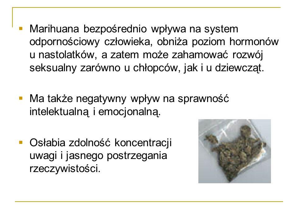  Marihuana bezpośrednio wpływa na system odpornościowy człowieka, obniża poziom hormonów u nastolatków, a zatem może zahamować rozwój seksualny zarów