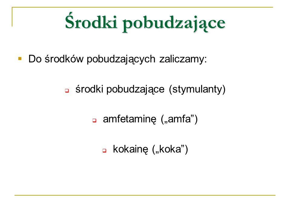 """Środki pobudzające  Do środków pobudzających zaliczamy:  środki pobudzające (stymulanty)  amfetaminę (""""amfa"""")  kokainę (""""koka"""")"""