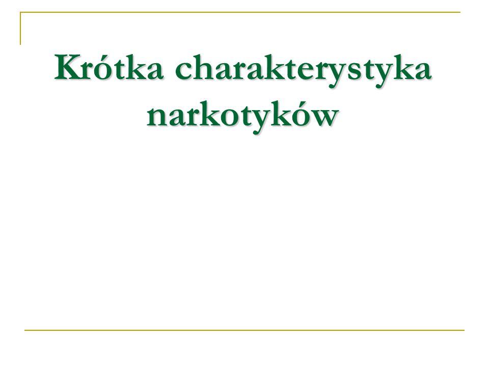 Bibliografia Kołodziejczyk A., Czemierowska E., Spójrz inaczej.