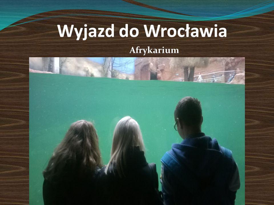 Wyjazd do Wrocławia Afrykarium