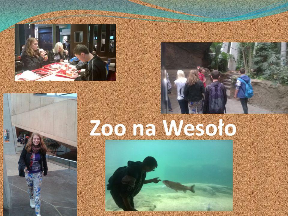 Zoo na Wesoło