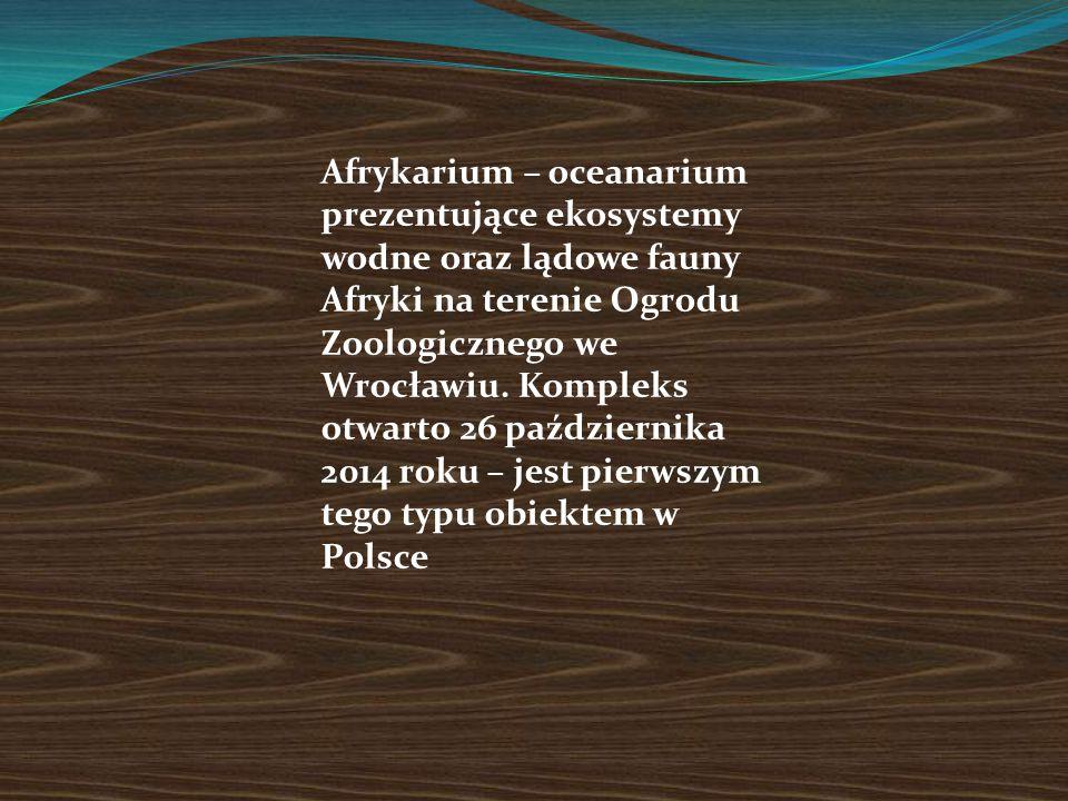 Afrykarium – oceanarium prezentujące ekosystemy wodne oraz lądowe fauny Afryki na terenie Ogrodu Zoologicznego we Wrocławiu.
