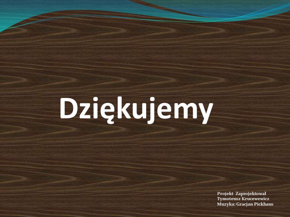Dziękujemy Projekt Zaprojektował Tymoteusz Krucewewicz Muzyka: Gracjan Pickhaus