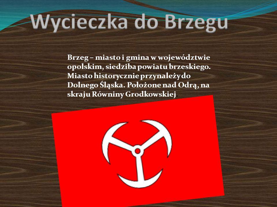 Brzeg – miasto i gmina w województwie opolskim, siedziba powiatu brzeskiego.