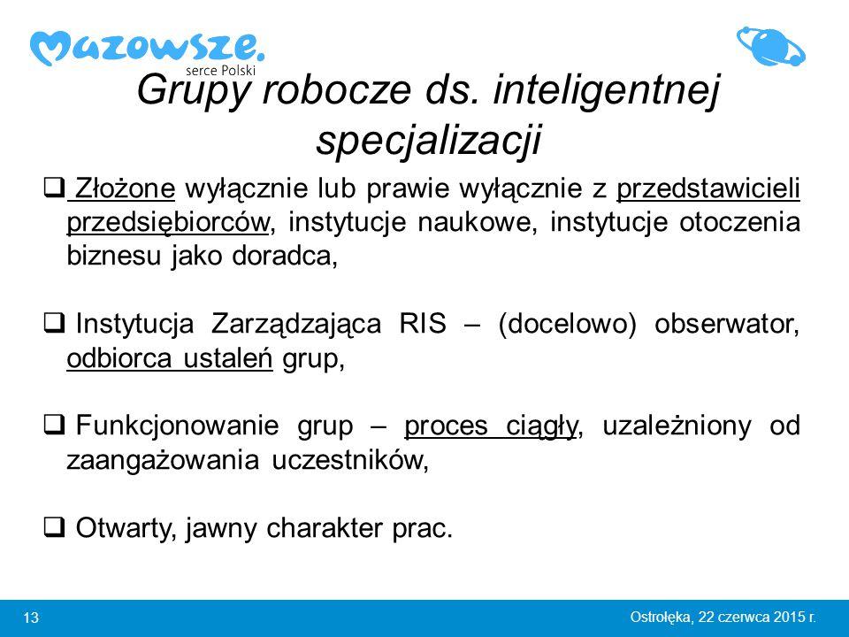 13 Ostrołęka, 22 czerwca 2015 r. Grupy robocze ds.