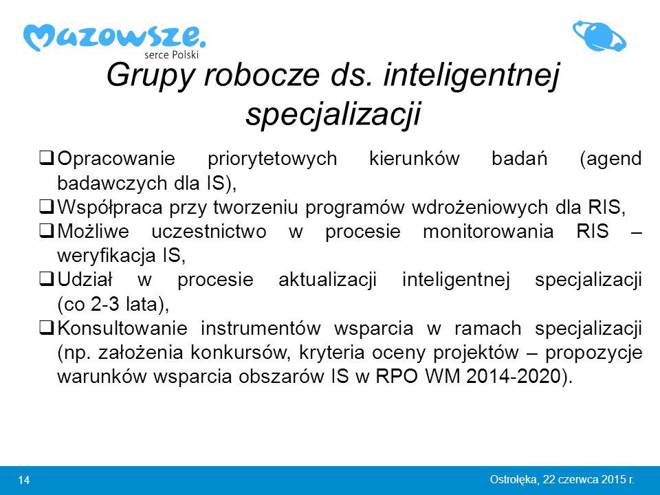 14 Ostrołęka, 22 czerwca 2015 r. Grupy robocze ds.
