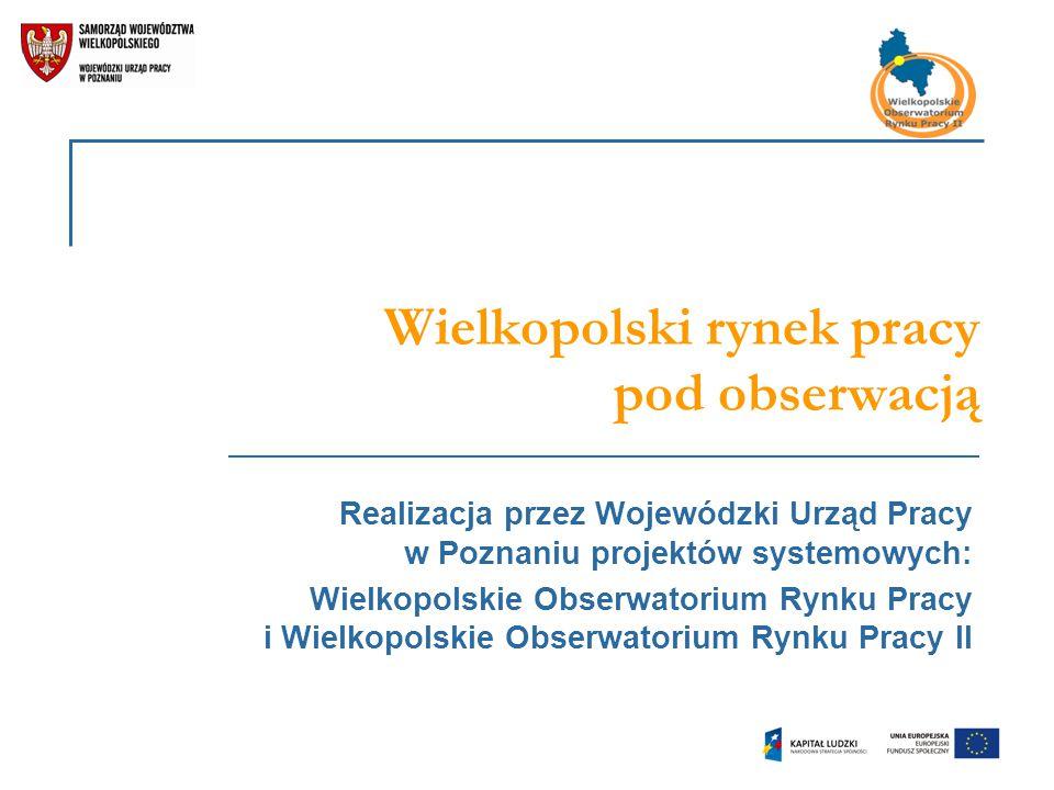 Planowane obszary badawcze Wydziału Badań i Analiz Rynku Pracy WUP w Poznaniu do 2016 r.