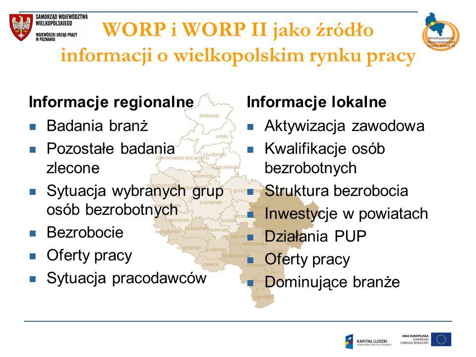 Obszary zainteresowań Funkcjonowanie wybranych grup na rynku pracy (np.