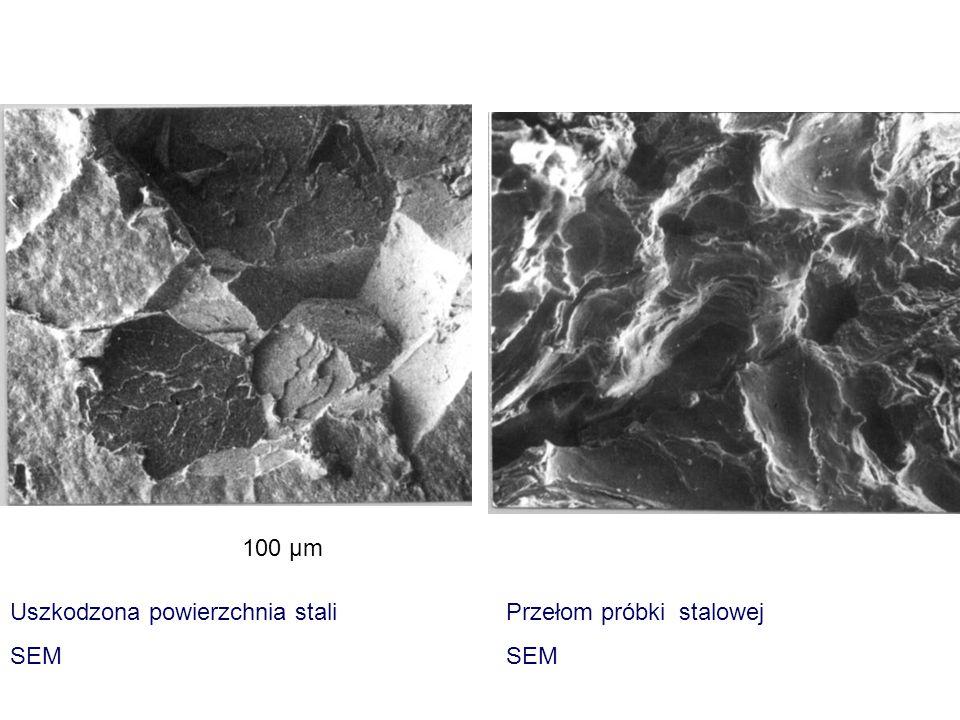 Uszkodzona powierzchnia stali SEM Przełom próbki stalowej SEM 100 μm