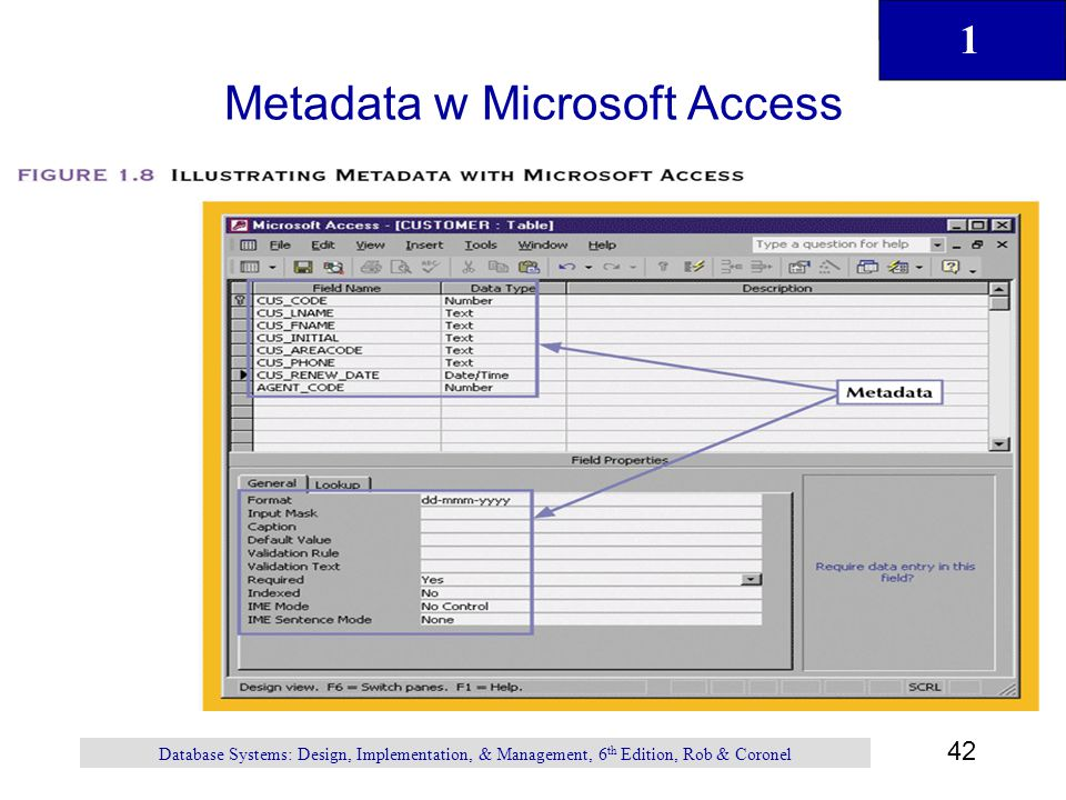 1 42 Database Systems: Design, Implementation, & Management, 6 th Edition, Rob & Coronel Metadata w Microsoft Access