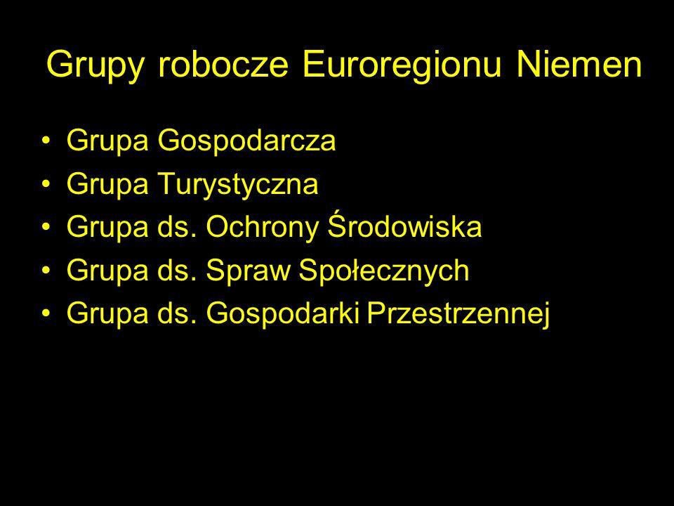 Grupy robocze Euroregionu Niemen Grupa Gospodarcza Grupa Turystyczna Grupa ds. Ochrony Środowiska Grupa ds. Spraw Społecznych Grupa ds. Gospodarki Prz