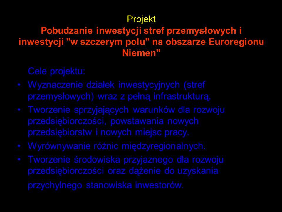 Projekt Pobudzanie inwestycji stref przemysłowych i inwestycji