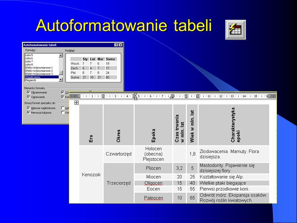 Modyfikacja tabeli Jeśli w trakcie pracy z tabelą okaże się, że jej struktura jest nieodpowiednia, można ją modyfikować, wybierając z menu Tabela funk