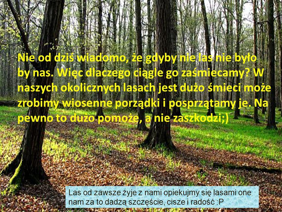 Nie od dziś wiadomo że gdyby nie las nie było by nas. Więc dlaczego ciągle go zaśmiecamy ? Jeżeli jest już w nim dużo śmieci to może warto go posprząt