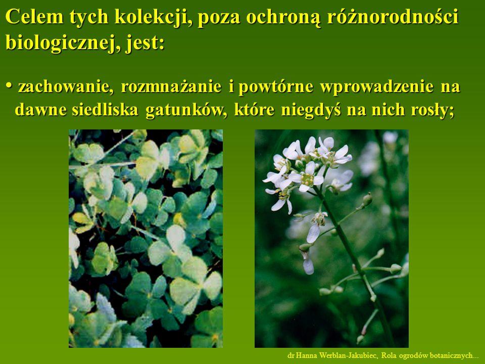 Celem tych kolekcji, poza ochroną różnorodności biologicznej, jest: zachowanie, rozmnażanie i powtórne wprowadzenie na zachowanie, rozmnażanie i powtórne wprowadzenie na dawne siedliska gatunków, które niegdyś na nich rosły; dawne siedliska gatunków, które niegdyś na nich rosły; dr Hanna Werblan-Jakubiec, Rola ogrodów botanicznych...