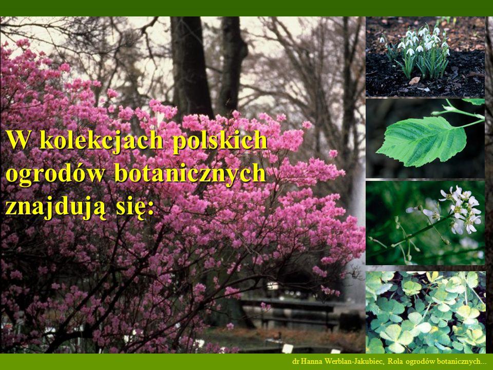 W kolekcjach polskich ogrodów botanicznych znajdują się: dr Hanna Werblan-Jakubiec, Rola ogrodów botanicznych...