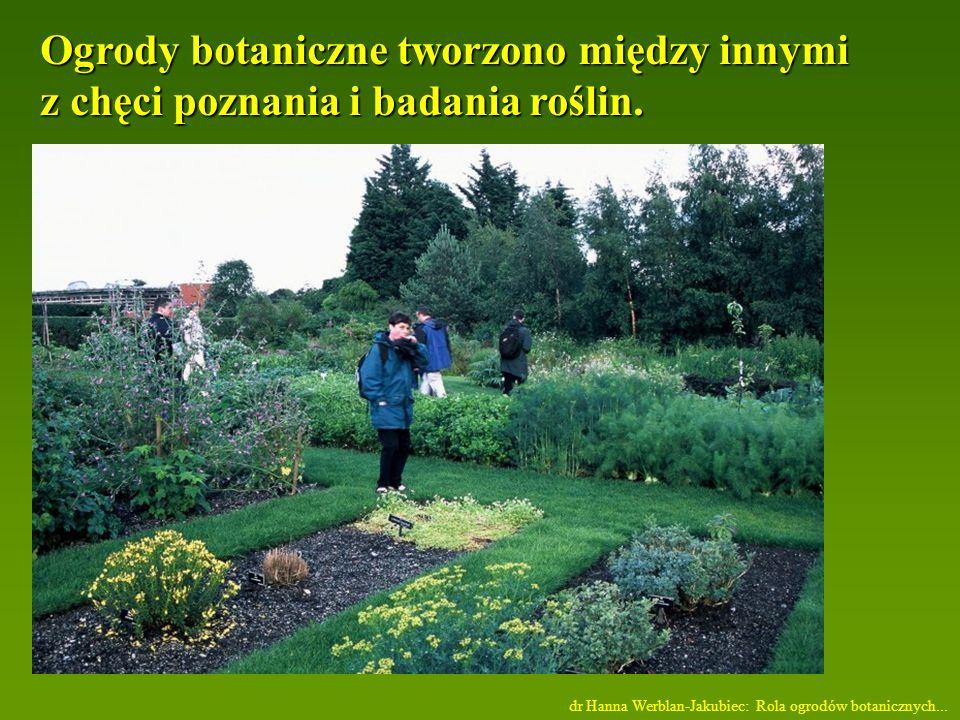 Ogrody botaniczne tworzono między innymi z chęci poznania i badania roślin.