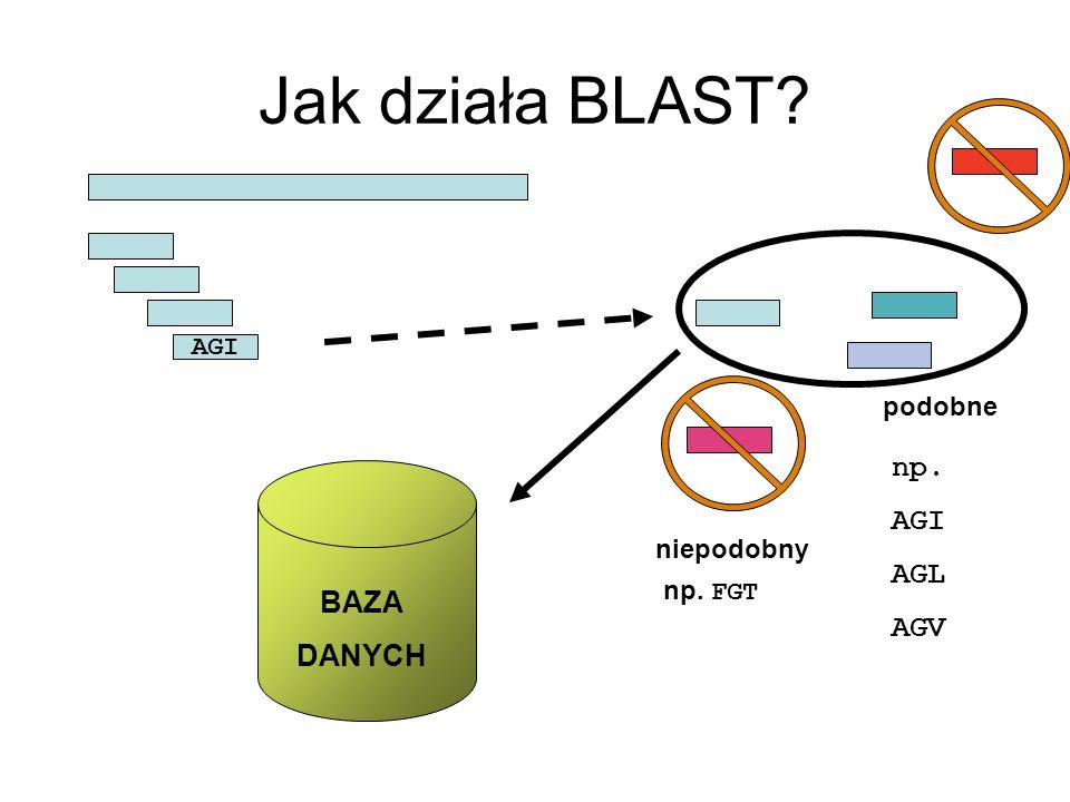Jak działa BLAST BAZA DANYCH podobne np. AGI AGL AGV niepodobny AGI np. FGT