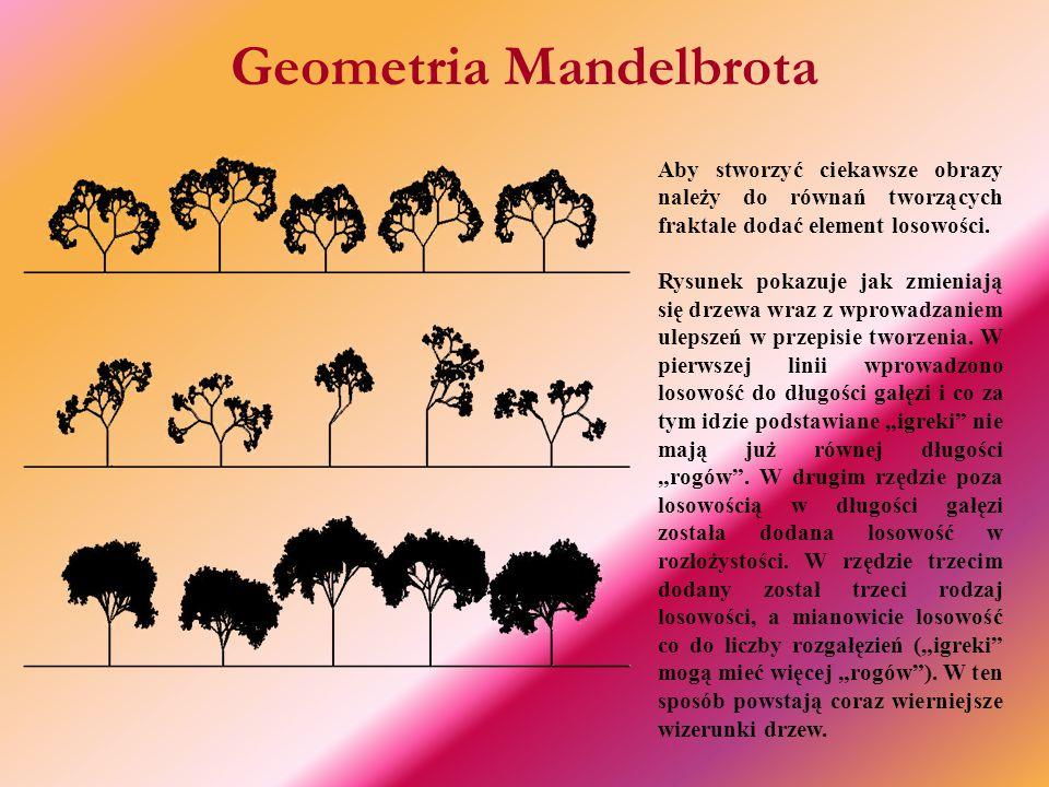 Geometria Mandelbrota Aby stworzyć ciekawsze obrazy należy do równań tworzących fraktale dodać element losowości.