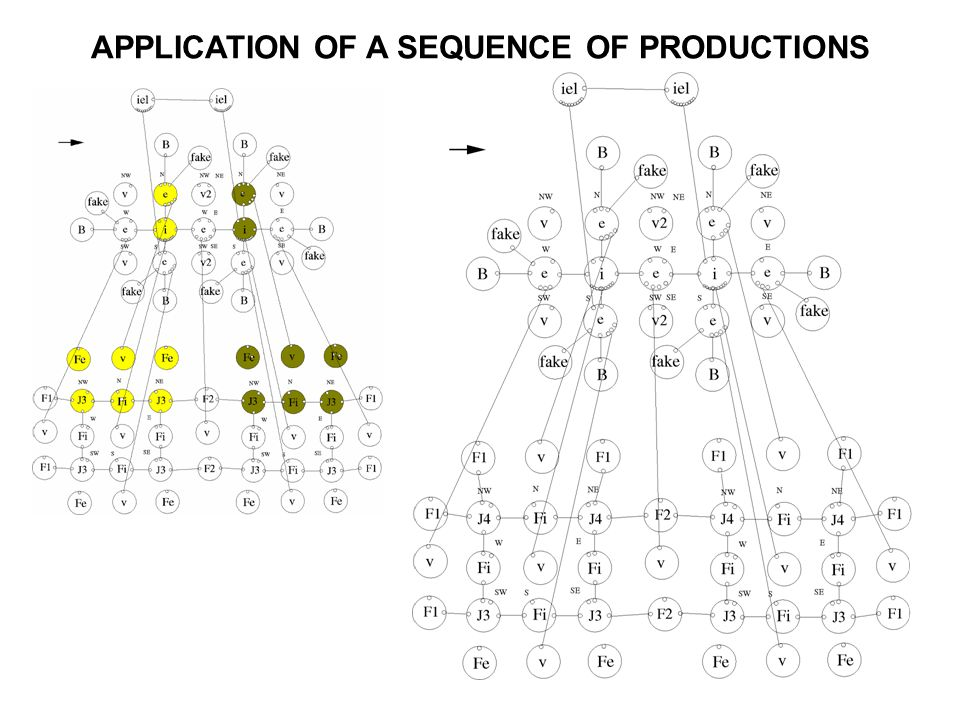 APPLICATION OF A SEQUENCE OF PRODUCTIONS
