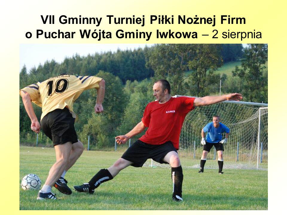 VII Gminny Turniej Piłki Nożnej Firm o Puchar Wójta Gminy Iwkowa – 2 sierpnia