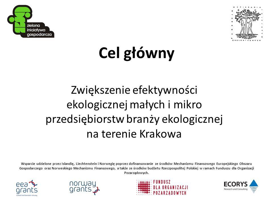 inne działania promocyjne udział ZIG-u w kilku targach i festiwalach konferencja prasowa międzynarodowa konferencja promująca efekty projektu (Kraków styczeń 2010)