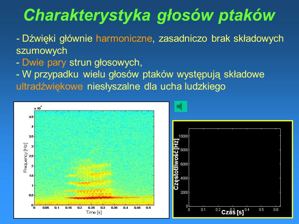 Charakterystyka głosów ptaków - Dźwięki głównie harmoniczne, zasadniczo brak składowych szumowych - Dwie pary strun głosowych, - W przypadku wielu głosów ptaków występują składowe ultradźwiękowe niesłyszalne dla ucha ludzkiego t rz y Czas [s] Częstotliwość [Hz]