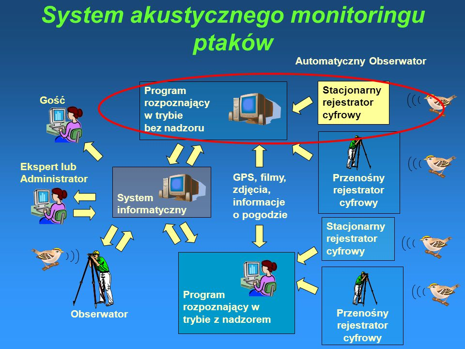 System akustycznego monitoringu ptaków Stacjonarny rejestrator cyfrowy Przenośny rejestrator cyfrowy Program rozpoznający w trybie bez nadzoru System