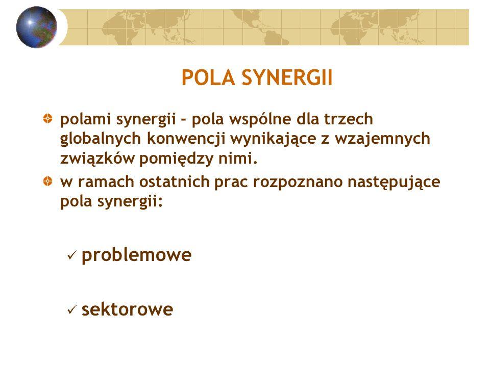 POLA SYNERGII polami synergii - pola wspólne dla trzech globalnych konwencji wynikające z wzajemnych związków pomiędzy nimi.