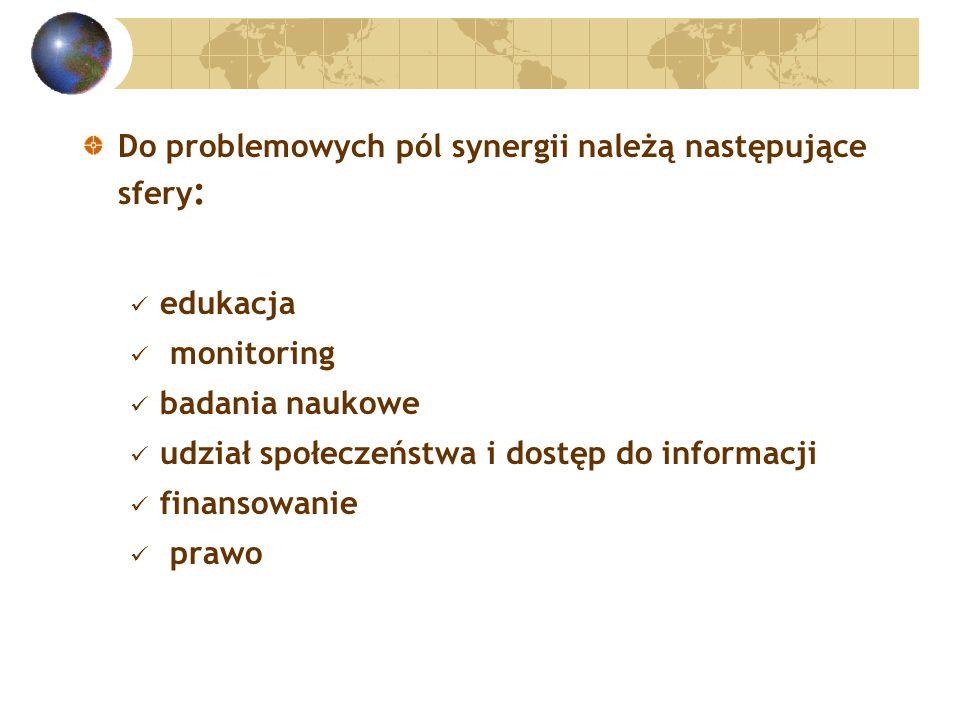 Do problemowych pól synergii należą następujące sfery : edukacja monitoring badania naukowe udział społeczeństwa i dostęp do informacji finansowanie prawo