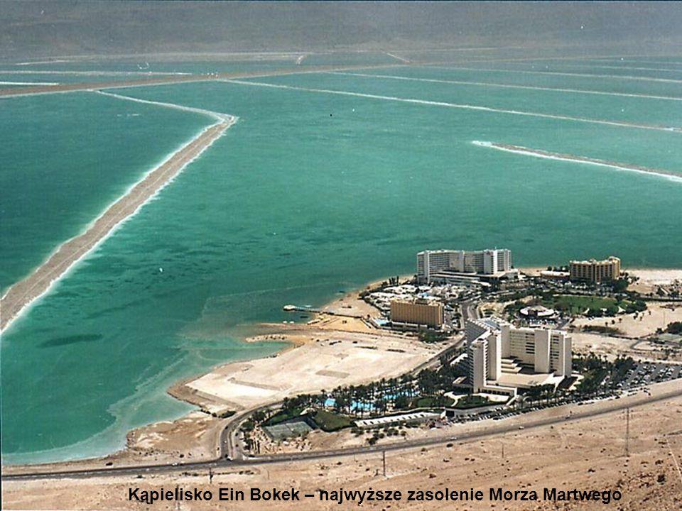 Kąpielisko Ein Bokek – najwyższe zasolenie Morza Martwego