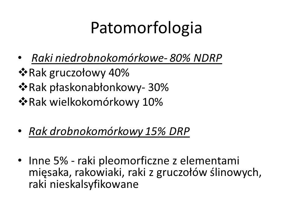 Patomorfologia Raki niedrobnokomórkowe- 80% NDRP  Rak gruczołowy 40%  Rak płaskonabłonkowy- 30%  Rak wielkokomórkowy 10% Rak drobnokomórkowy 15% DR