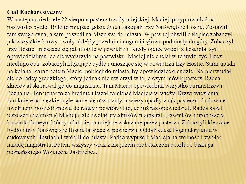 Cud Eucharystyczny W następną niedzielę 22 sierpnia pasterz trzody miejskiej, Maciej, przyprowadził na pastwisko bydło.