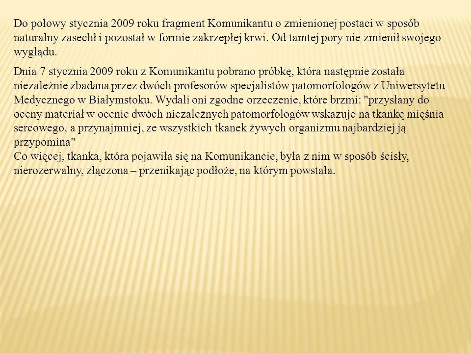 Do połowy stycznia 2009 roku fragment Komunikantu o zmienionej postaci w sposób naturalny zasechł i pozostał w formie zakrzepłej krwi.