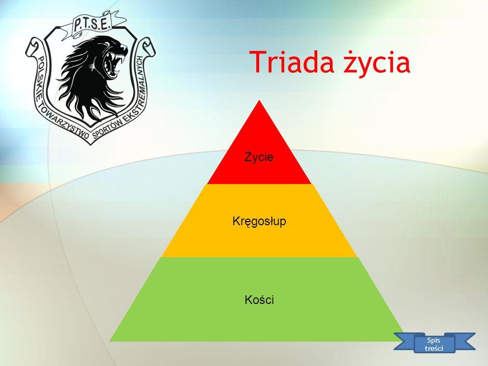 Pozycje bezpieczne Spis treści UWAGA !!!.