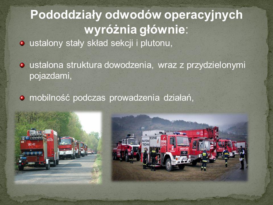 Pododdziały odwodów operacyjnych wyróżnia głównie: ustalony stały skład sekcji i plutonu, ustalona struktura dowodzenia, wraz z przydzielonymi pojazda