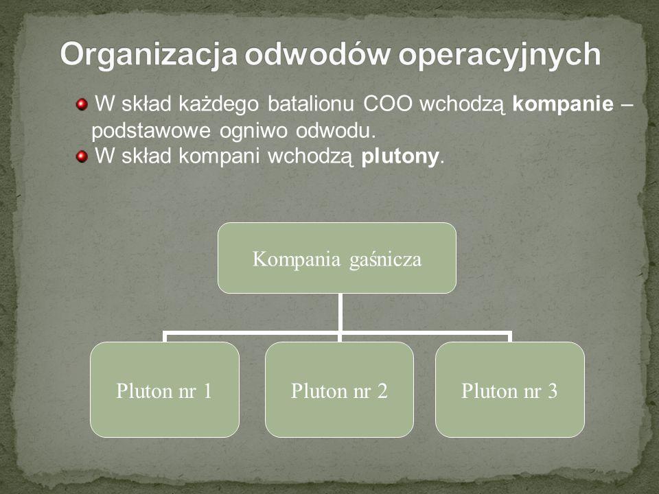 W skład każdego batalionu COO wchodzą kompanie – podstawowe ogniwo odwodu. W skład kompani wchodzą plutony. Kompania gaśnicza Pluton nr 1Pluton nr 2Pl