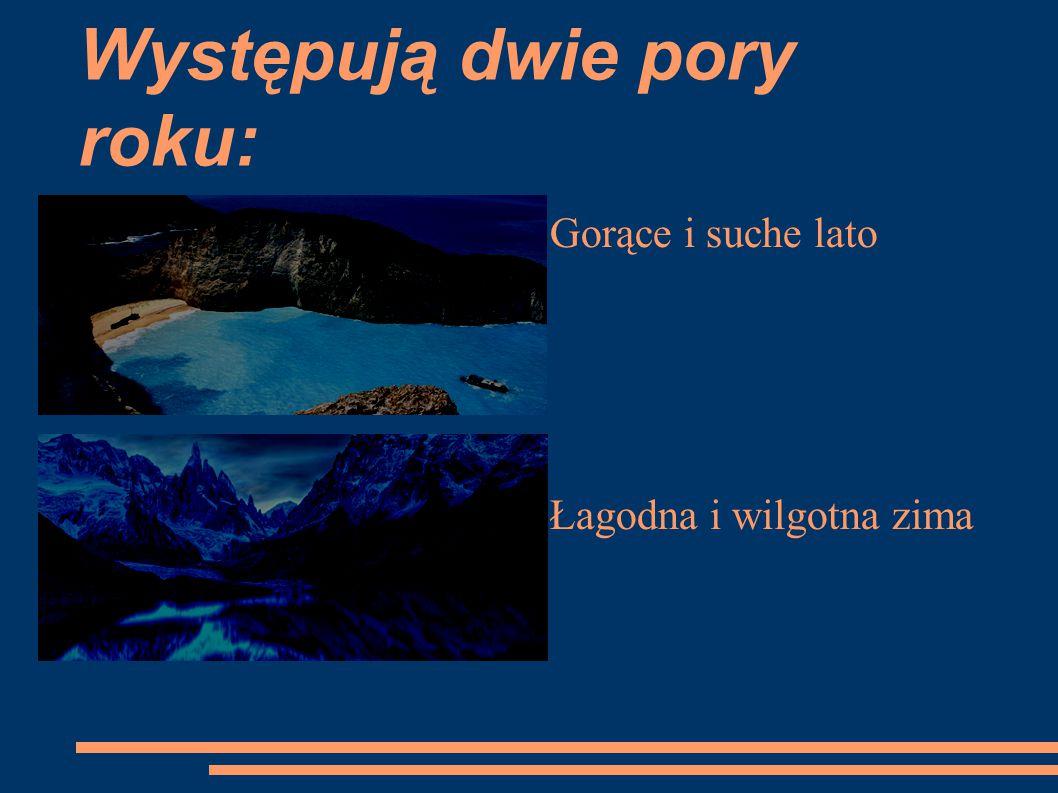 Występowanie wybrzeża Morza Śródziemnego ● północna oraz południowa Afryka ● Ameryka Północna – Kalifornia ● Australia- lasy eukaliptusowe