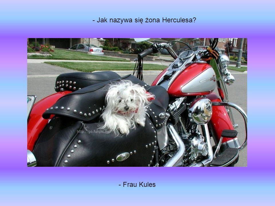 - Frau Kules - Jak nazywa się żona Herculesa?